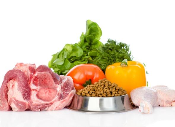 营养均衡的狗粮中应该有什么?