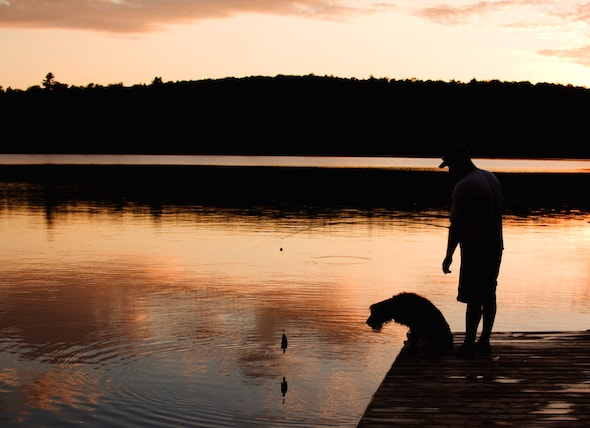 和狗狗一起钓鱼需要注意什么?